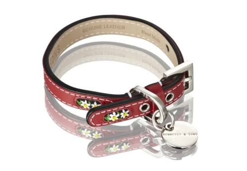 Henessy & Sons Edelweiss halsband, rood