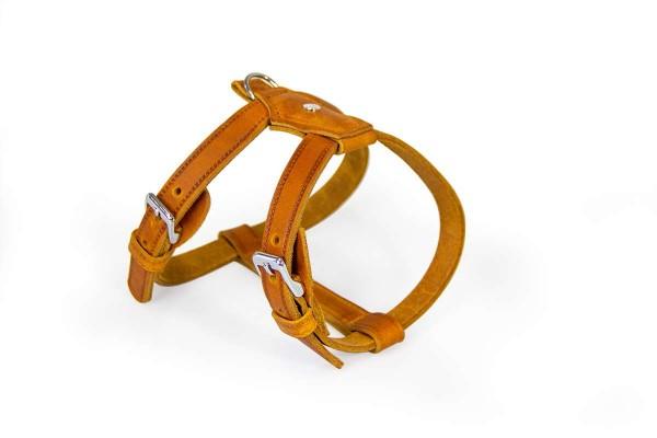 Das Lederband Tuig Weinheim maroon