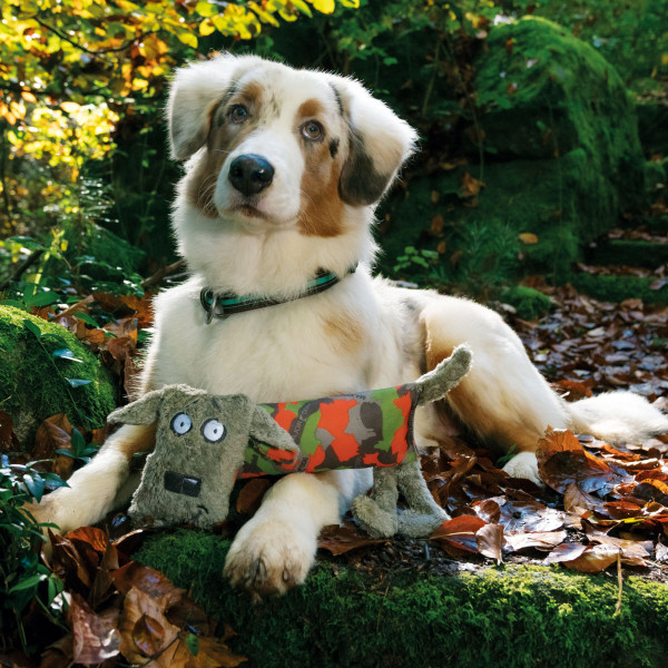 Major Dog dummy Oskar