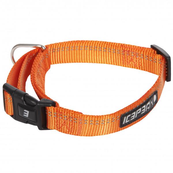 Icepeak Winner Basic Halsband, Oranje
