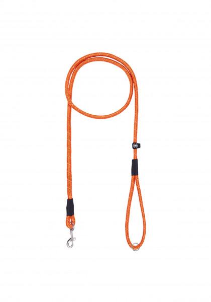 Icepeak Pet Liner riem, oranje
