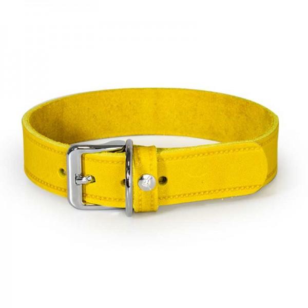 Das Lederband Halsband Weinheim Geel