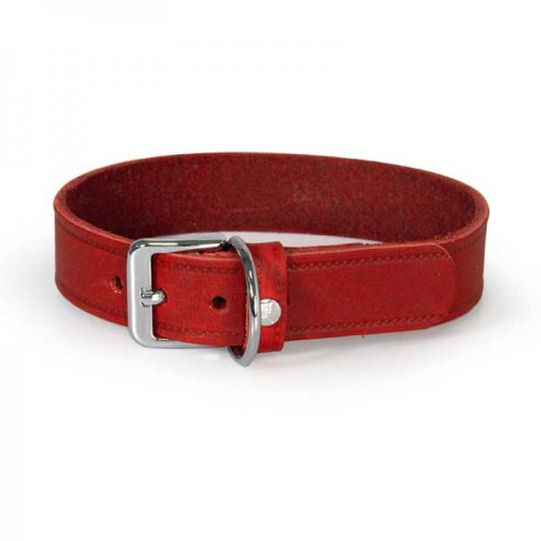 Das Lederband Halsband Weinheim Rood