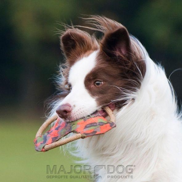 Major Dog Frisbee